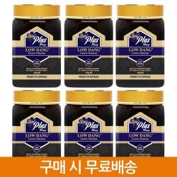 로우당 꿀 x6